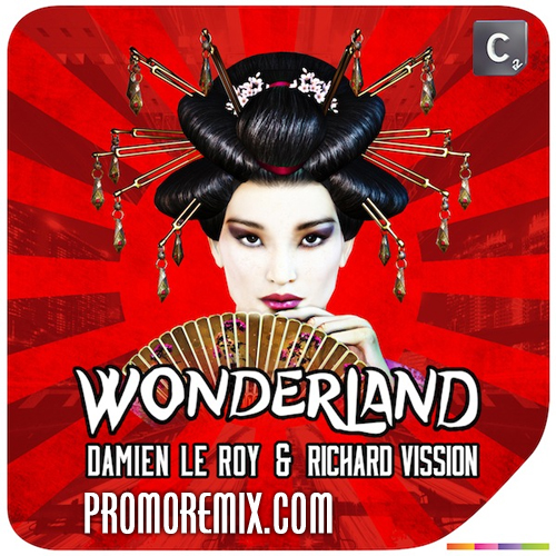 Damien Le Roy & Richard Vission - Wonderland (DJ Amir Udai Mashup)