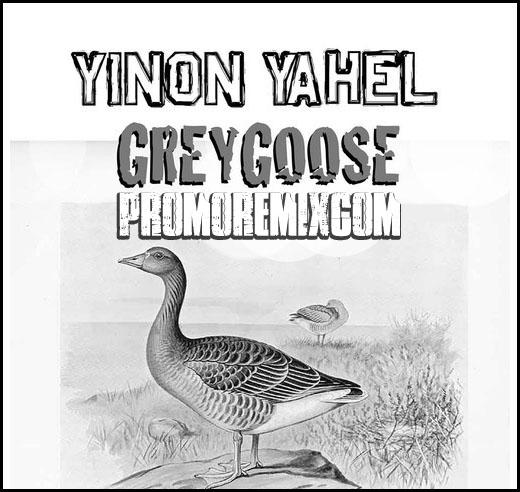 Yinon Yahel - Gregose